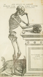 Vesalius - Copy