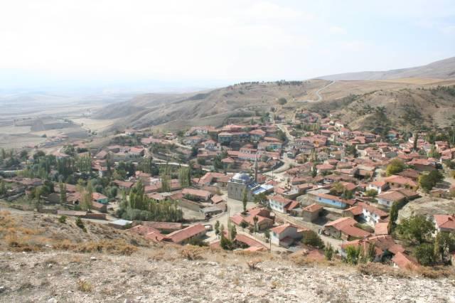 euchaita